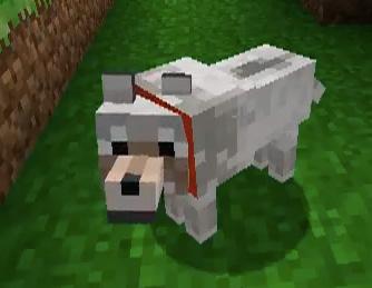 O zabíjení virtuálních psů