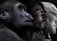 Ape, human, robot