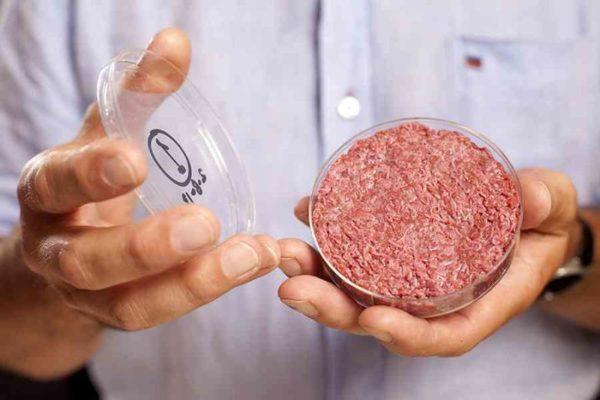 Zářná budoucnost umělé výroby masa