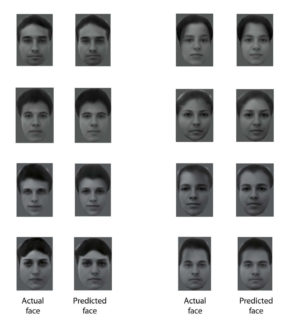 mathematically-generated-faces-facial-recognition-algorithms-Tsao