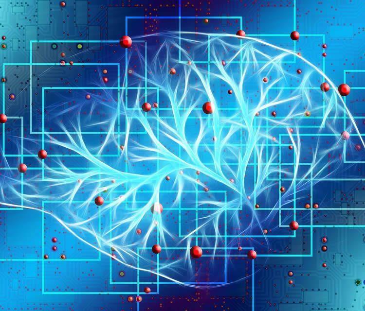 Neurovědci identifikovali úplně novou formu nervové komunikace vmozku